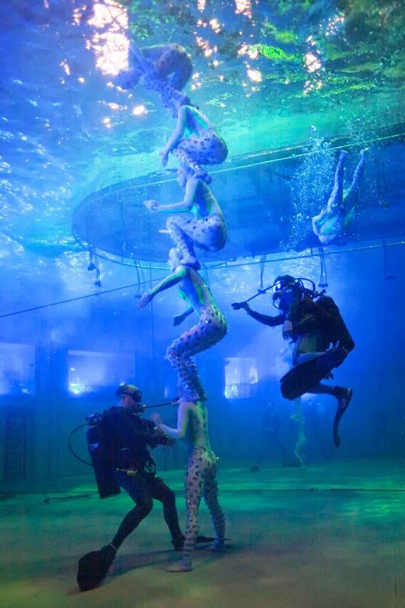 o-show-underwater